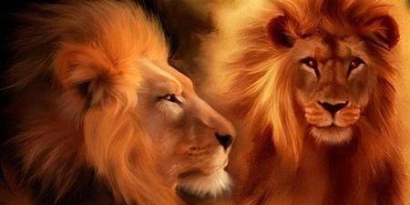 Leões surdos