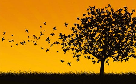 Árvore dos desejos