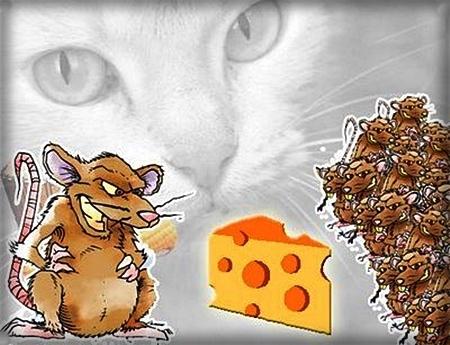 O sonho dos ratos