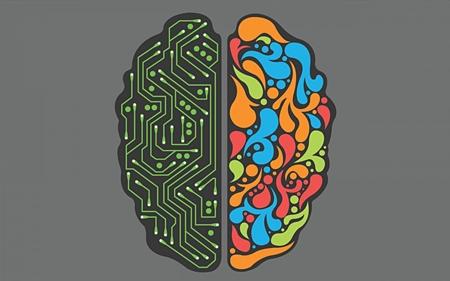 Os Dois Lados do Cérebro